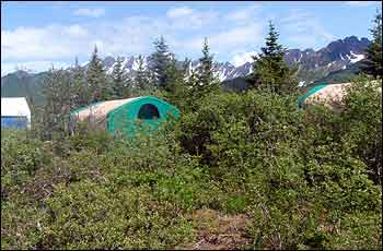 Bear Glacier Wilderness Retreat Glamping Lodge
