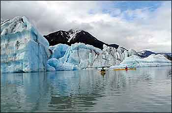 Bear Glacier Wilderness Kayaking With Icebergs