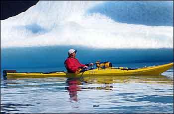 Bear Glacier Sea Kayaking - Guided and Unguided Kayaking
